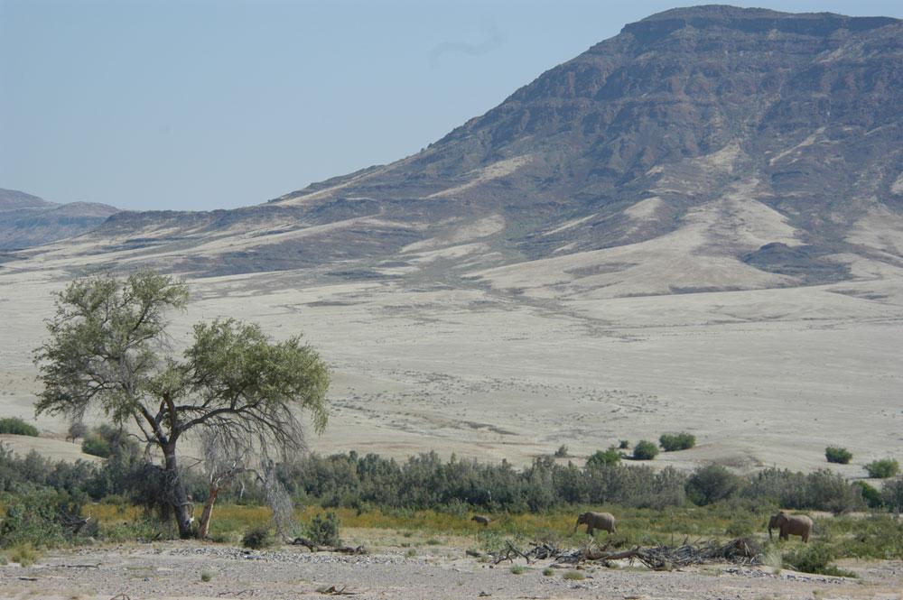 namibianpoligy
