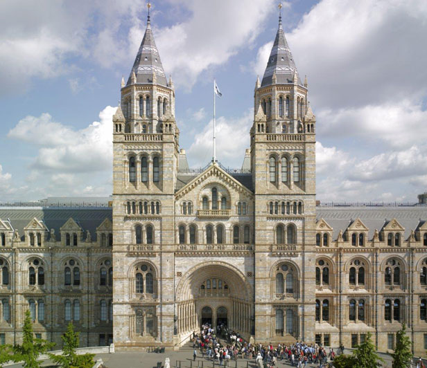 The British Natural History Museum in London, to me, the most beautiful building in the capitol.