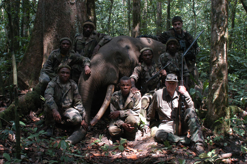 The author in front, the late Geoffroy de Gentile (an excellent and very experienced French professional hunter) at the back and the author's pygmy tracking team with his huge rain forest elephant bull, the biggest shot in Cameroon over the previous 11 years. Rain forest elephants are  just over half the size of their savannah brothers. The pygmies are suitably solemn because they believed this was the bull that had killed their lead tracker, Van Damme, the week before.