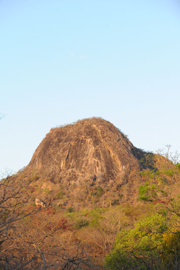 A lone granite inselberg or island mountain rises from the brachystegia or miombo woodland.