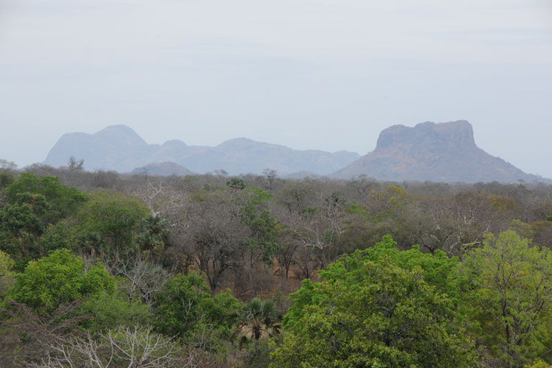 A view over the rolling miombo woodland with a variety of granite inselbergs or island mountains rising from the plains in Northern Mozambique's 4,2 million hectare Niassa National Reserve.