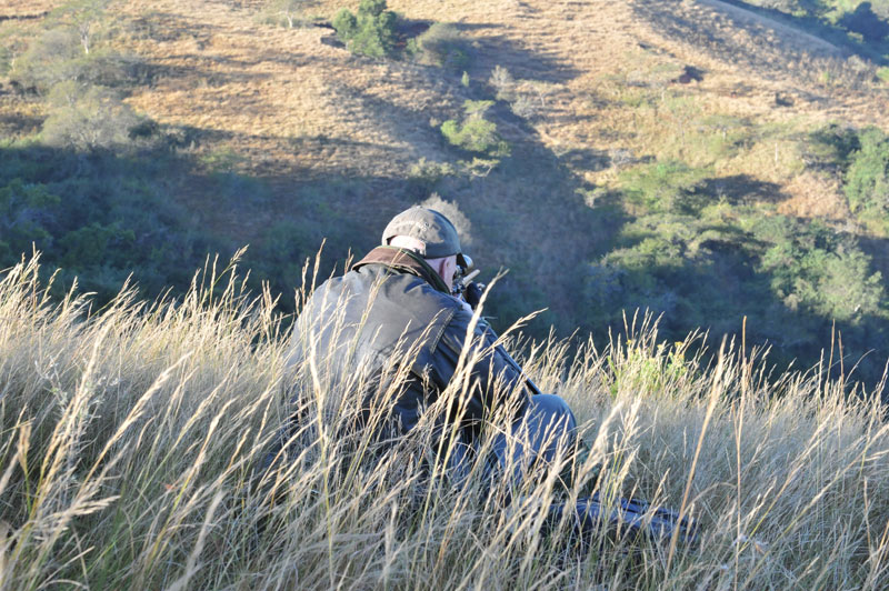 The author, Peter Flack, aiming his. 300 Win. Mag., at the exact spot from which The Donkey was shot in the sunlight patch in the valley below.