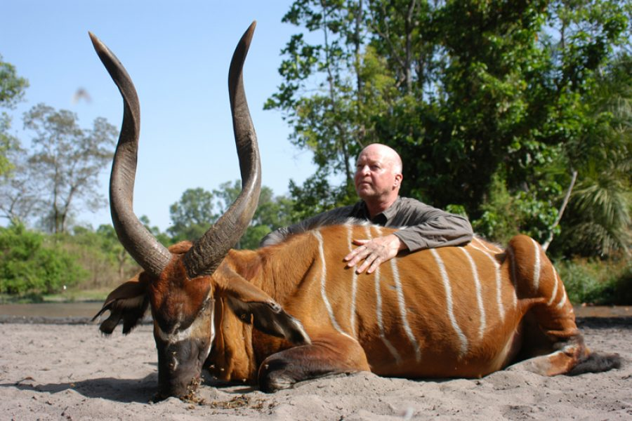 World Record Bongo – Africa's Top Trophy