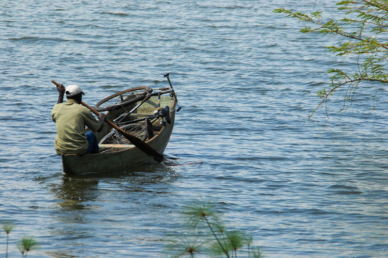 Our camp cook in Uganda paddling across Lake Kagera with his bicycle to visit his girl friend. It is often people in frail craft like this that are overturned  and drowned or bitten by hippos.