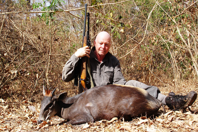 PHF clutching his .375 behind a good yellow-backed duiker shot in C.A.R.