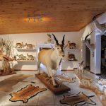 Trophy Room Bankfontein