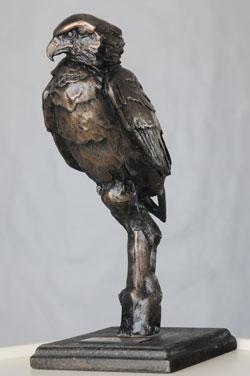 bataleur-award