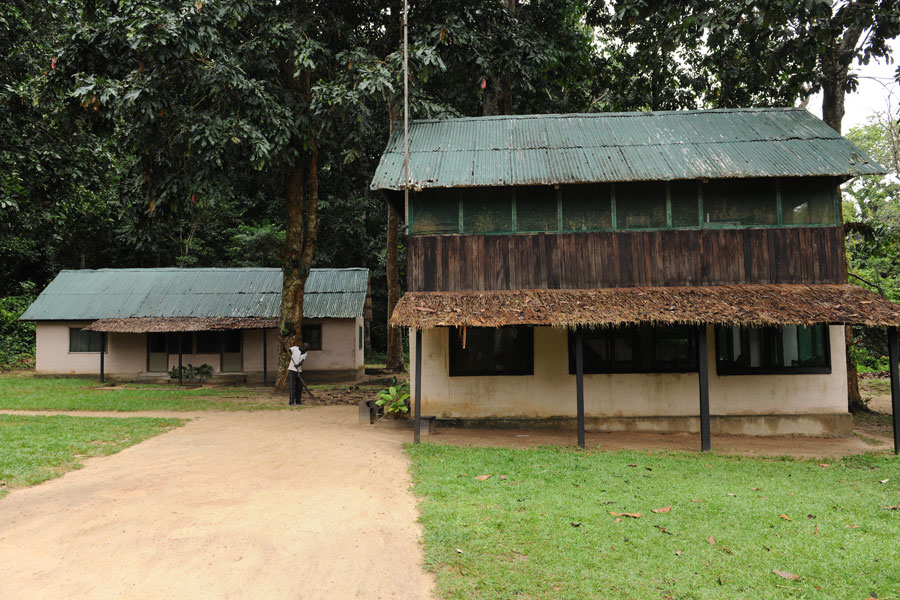 The Congo Safaris camp in north eastern Republic of the Congo with some of the living accommodation on the left and the main dining room (below) and bar (top) on the left